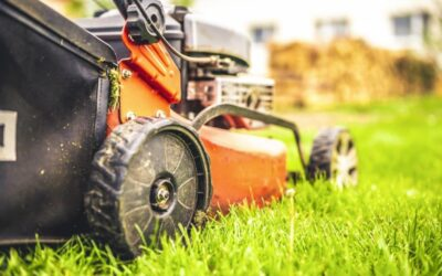 13 Things To Know About Residential Yard Maintenance