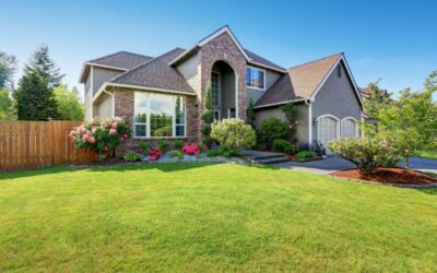 Residential Yard Maintenance – Everything You Need to Know